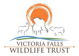 Visiting the Victoria Falls Wildlife Trust