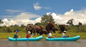 Victoria Falls activities and attractions - canoeing on the Zambezi