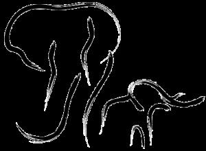 The Elephant Camo logo