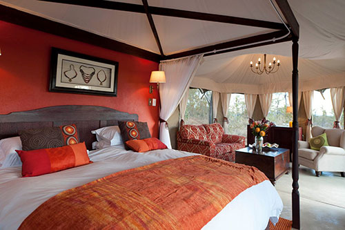 The Elephant Camp Luxury Accomodation - rooms interior