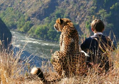 Sylvester the cheetah and friend