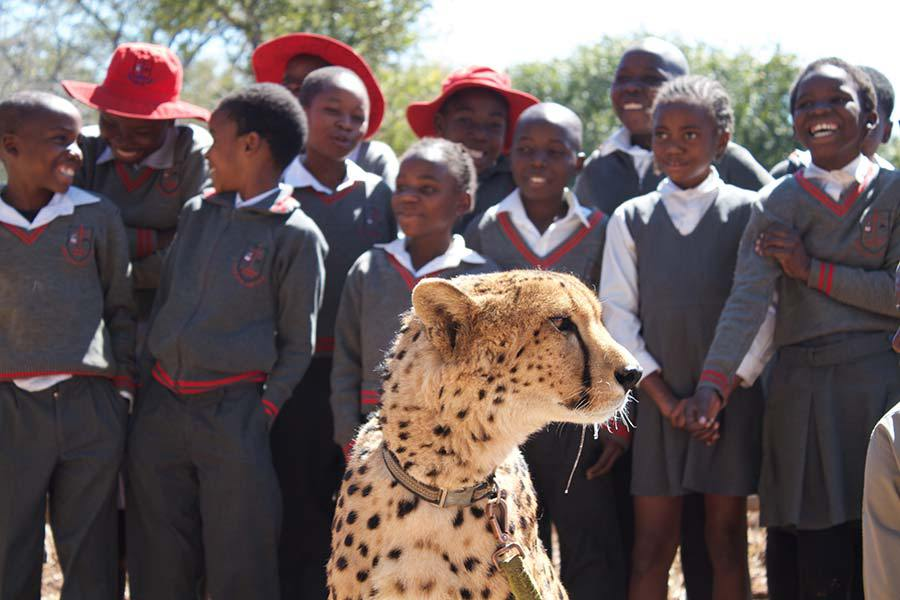 Community Education and Conservation